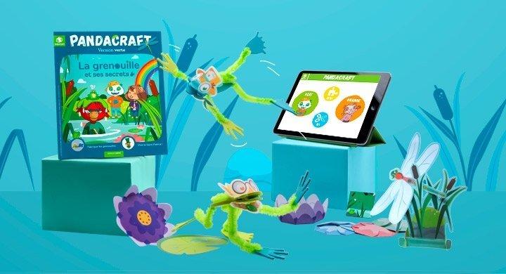Kit créatif - Le réveil des grenouilles - Version Verte