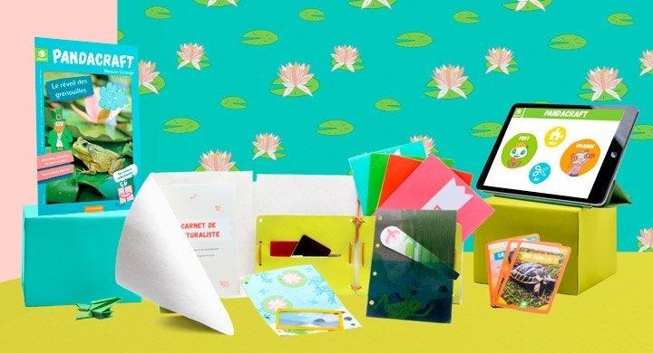 Kit créatif - Le réveil des grenouilles - Version Orange
