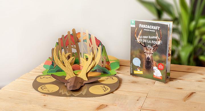 Le cerf, le roi de la forêt